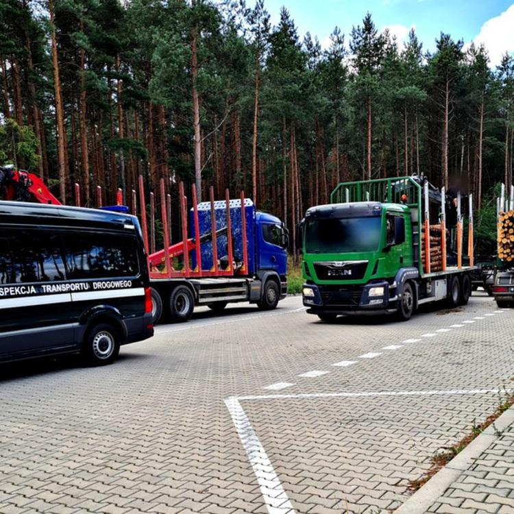 Galeria Przewóz drewna na celowniku opolskiej inspekcji